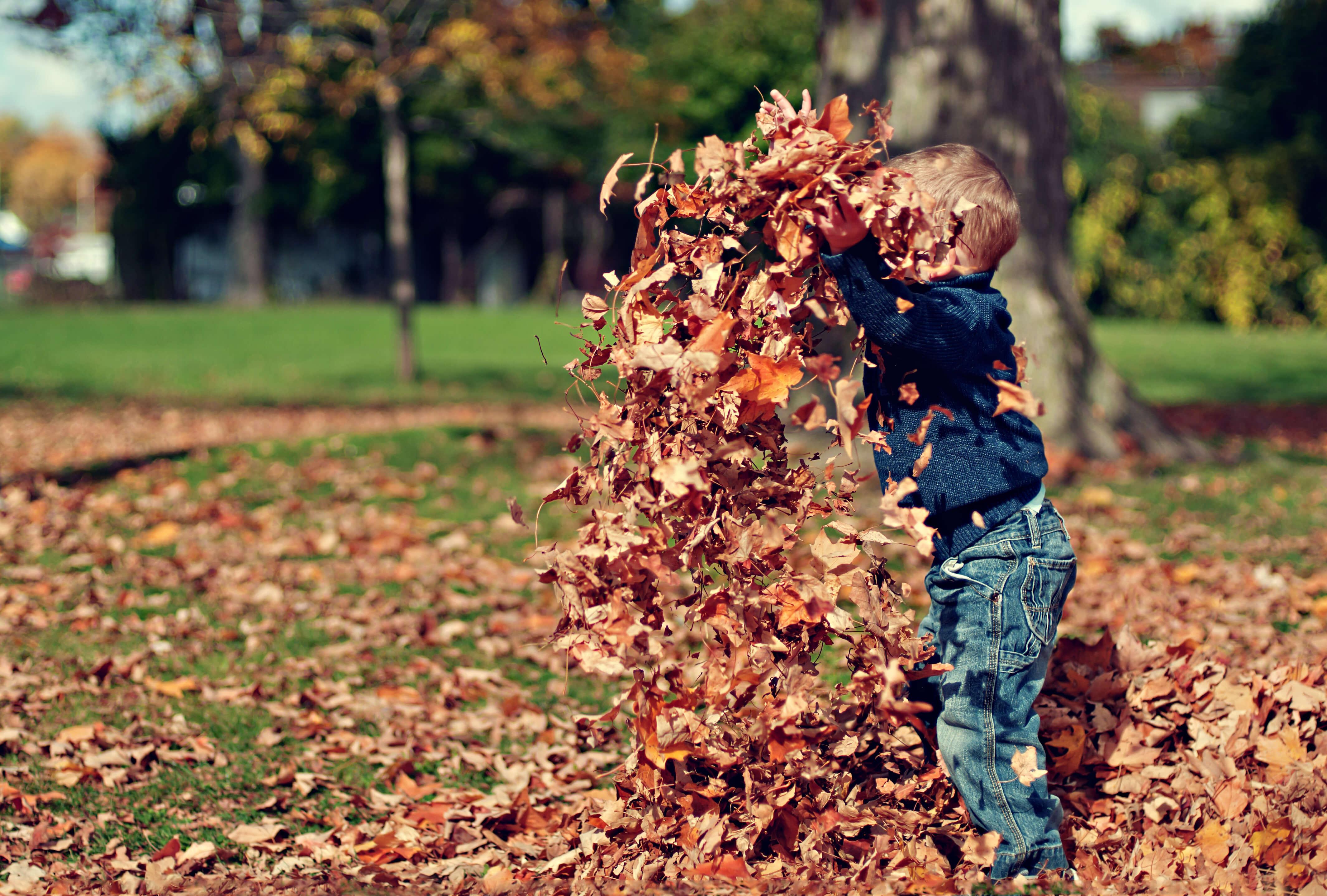 herfstvakantie, activiteiten, kinderen